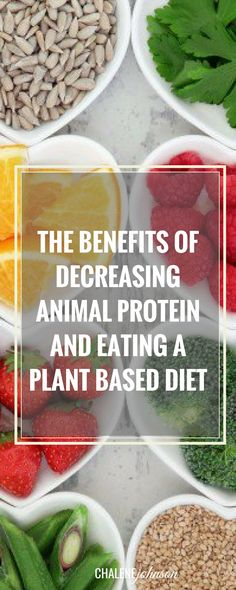 The Benefits of Decreasing Animal Protein and Eating a Plant Based Diet - Chalene Johnson Official Site Benefits Of Vegetarian Diet, Vegetarian Protein, Vegetarian Meals, Eating Too Much Protein, Healthy Eating, Clean Eating, Plant Based Protein, Plant Based Diet, Whole Food Recipes