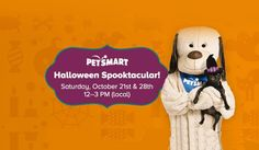 PetSmart will be hosting a PetSmart Halloween Spooktacular Event where pets will be able to score a FREE pet collar safety light and coupons! Free Baby Samples, Free Baby Stuff, Pet Collars, Snoopy, Usa, Pets, Halloween, Fictional Characters, Fantasy Characters