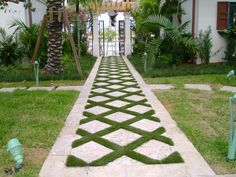 SoftLawn - Lawn and Landscape - Photo Gallery