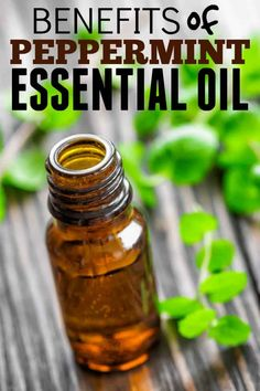 Top benefits Peppermint Essential Oil. A list of the most common and favorite uses and benefits.