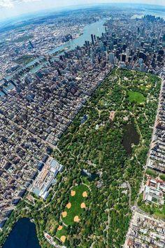 Concrete jungle #VEDAxTheCools