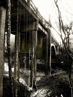 Spook Bridge In Valdosta Ga