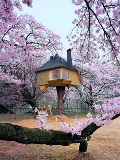 Tree houses represent a creative challenge to visionary architects in every corner of the globe. They fuse the natural world with the artificial in ways that are often stunning. Tetsu Teahouse, Hokuto City, Japan: This whimsical tree-top teahouse was designed by architect Terunobu Fujimori and sits perched among cherry trees in the Kiyoharu Shirakaba Museum, in Hokuto City, Yamanashi Prefecture, Japan.