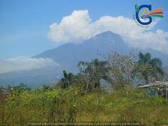 Wisata Gunung Cikuray Garut | Tempat Wisata di Garut | HdG Team