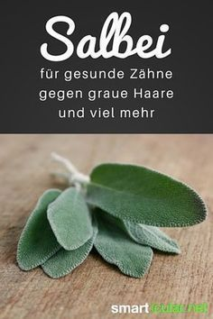 Sage: against gray hair, for healthy teeth and much more- Salbei: gegen graue Haare, für gesunde Zähne und viel mehr That sage is healthy, you know for a long time. But also that he helps with gray hair and cleans teeth - Healthy Beauty, Healthy Tips, Health And Beauty, Health And Wellness, Natural Cleanse, Natural Health, Salvia, Best Cardio Workout, Healthy Teeth