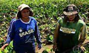 Globo Repórter - Catadoras de iscas enfrentam piranhas, jacarés e até onças em seu trabalho | globo.tv