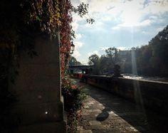 Herbsttag in München - wo kann der Herbst schöner sein?  Beautiful autumn in munich  #münchenverliebt #münchnermomente #lieblingsstadt #herbstfarben #bestermaler #münchen #Munich #Herbst #herbsttage #münchenliebe @muenchen