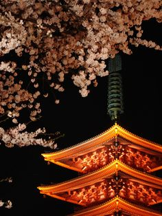 the five-story pagoda of Senso-ji temple, Tokyo, Japan