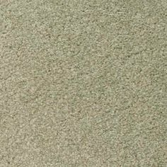MISTY MEADOW Texture Active Family™ Carpet - STAINMASTER®