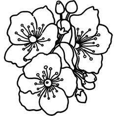Outline Drawings, Art Drawings, Arte Gcse, Bloom Tattoo, Cute Coloring Pages, Printable Flower Coloring Pages, Flower Outline, Bloom Baby, Floral Drawing