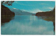 Postcards - United States #  848 - Trout River, Muncho Lake, Alaska