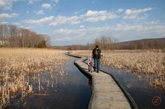 Appalachian trail in Pawling NY