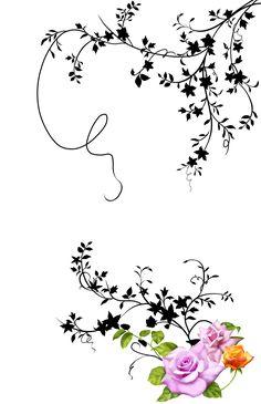 White Leaf, Black And White, Black Leaves, Vector Flowers, Border Design, Geometric Art, Outdoor Gardens, Beautiful Flowers, Print Patterns