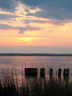 Chincoteague Island, Virginia