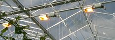 Supplementary Lighting | Bridge Greenhouses Bridge are UK agents for Gavita Horticultural Lighting, a Norwegian based company with offices in The Netherlands & Canada. Gavita has extensive knowledge in glasshouse lighting, with products that boast reliability and high efficiency. Using the expertise of Gavita, Bridge are able to offer a computer designed lighting scheme to maximise the effectiveness of the each light. Glass House, Greenhouses, Offices, Utility Pole, Track Lighting, Netherlands, Bridge, Knowledge, Canada
