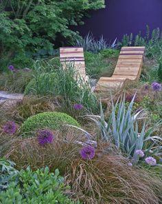 Ornamental grasses coordinate with gorgeous teak lounge chairs...from the Chelsea Flower Show