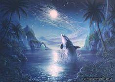 Orca a whale