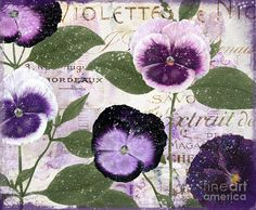 January Purple Pansies Painting by Mindy Sommers