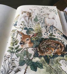 8,574 отметок «Нравится», 85 комментариев — Lily Seika Jones (@rivuletpaper) в Instagram: «A closer look // Stay tuned for more natural studies ☕✨#bambi #myspiritanimal»