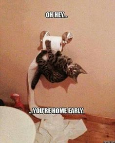 Oops. You're home early.