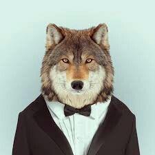 Wolf #classy #desing #animal #as #human #wolf