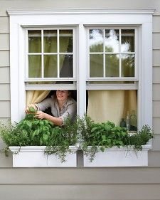 What could be more convenient than an herb garden grown in window boxes outside a sunny kitchen window? via Martha Stewart-kitchen window Diy Herb Garden, Home And Garden, Herbs Garden, Garden Modern, Flowers Garden, Garden Windows, Balcony Garden, Terrace, Small Space Gardening
