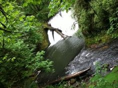 Silver creek, twin falls