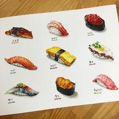 """908 Likes, 24 Comments - watercolor food painting/맛있는그림 (@dalgura) on Instagram: """"초밥 모듬..이렇게 찍어놓으니 꼭 초밥집 메뉴판같네 ㅎㅎ  다음주제를 계속 초밥을 할지 다른걸 할지 고민중.. 今までのお寿司合わせです!! 次は何のテーマに絵を描くか悩んでます。…"""""""