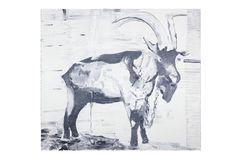 Bruno Dunley, Bode, 2011, oil on canvas, 156,5 x 176 cm
