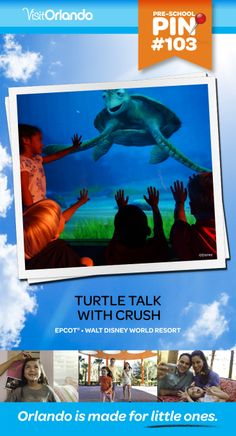 Turtle Talk with Crush - Kids of all ages can gather 'round a window to the ocean for a real-time Q-and-A session with your favorite totally tubular turtle from Disney/Pixar's Finding Nemo. Righteous! No minimum height requirement.   #VisitOrlando #WaltDisneyWorld #FindingNemo #Nemo #Orlando #Preschool #littleones #travel #familytravel