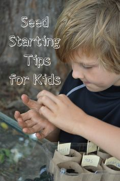 Seed Starting Tips for Kids on the @MomItForward blog - new post on MomItForward