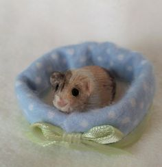 Miniature Clay Sculpted Guinea Pig in a Pet Bed by lovinclaydolls, $16.00
