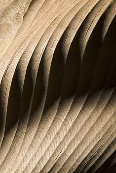 Chameo-design.com I Wood Inspiration I carved Wood
