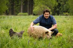 Kune Kune Schweine in der Edermühle. Schweine streicheln zum runterkommen. Ein Erlebnis für die ganze Familie und jeden Tierliebhaber. Animals, Pork, Animales, Animaux, Animal, Animais
