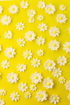 fondant Classic Vanilla Cake in a tie dye pattern with yellow buttercream frosting and fondant daisies. Iphone Wallpaper Landscape, Floral Wallpaper Iphone, Daisy Wallpaper, Flower Background Wallpaper, Spring Wallpaper, Cute Patterns Wallpaper, Apple Wallpaper, Cute Wallpaper Backgrounds, Flower Backgrounds
