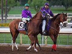Horse of the Year California Chrome may miss the June 17 Prince of Wales's Stakes (Eng-I) at Royal Ascot because he may have a bruised foot.