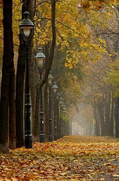 Autumn in Wien, Austria   Flickr - Photo by Nisi1973