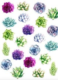 Free cactus printables - Kaktus - round-up