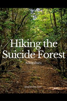 how to get to aokigahara forest