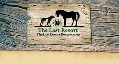 The Last Resort - The Last Resort Animal Rescue
