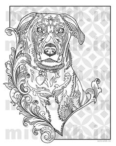 Love Dogs Coloring Book for Adults Vol. 1 by AbeesArtStudio | How ...