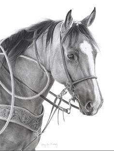 Pferd kohle