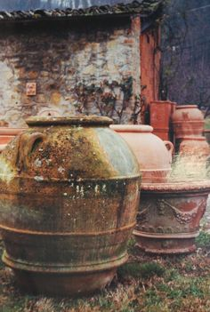 an incredible collection of antique terra cotta olive jars, side by side