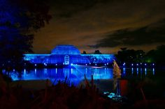 Laser beams dance across the lake in time to classic Christmas songs at Christmas at Kew 2016.
