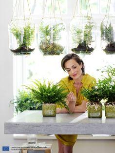 deze slaapkamerplanten houden je gezond groene vingers pinterest gezond lucht en. Black Bedroom Furniture Sets. Home Design Ideas