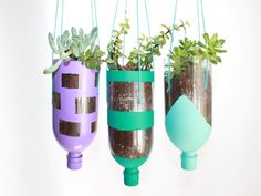 How To Make Hanging Planters from Recycled Water Bottles