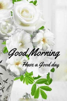 """Gud morning pics hd with white flowers vase. Saved by Somnath Ram """" Anuragi """" requesting to let me see this good morning flowers. Gud Morning Images, Good Morning Flowers Pictures, Good Morning Beautiful Pictures, Good Morning Photos, Morning Pictures, Morning Quotes, Good Morning Dear Friend, Good Morning Kisses, Good Morning Wednesday"""