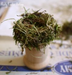 Rusty Rooster Vintage: Tutorial - Making bird's nests--would be great to make some larger ones for Easter Eggs! Bird Nest Craft, Bird Crafts, Easter Crafts, Bird Nests, Easter Decor, Easter Ideas, Spool Crafts, Fairy Furniture, Wooden Spools