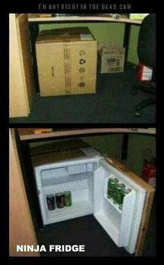 Ninja fridge... Don't touch my dr pepper!
