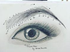 """173 Likes, 2 Comments - Renata Barcelli (@rebarcelli) on Instagram: """"Técnica MASTER CLASS #laboratoriodassobrancelhas #renatabarcelli #vivianebarcelli #trainingclass…"""""""